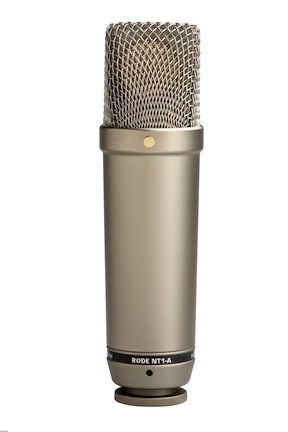 Another condenser mic to record vocals with is the Rode NT1-A